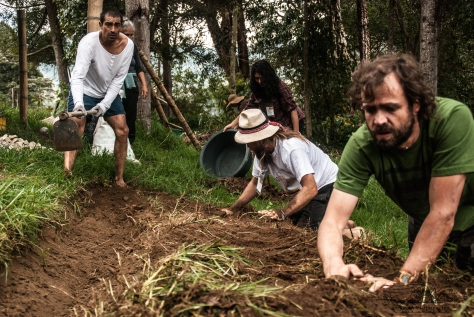 Convergence participants working in the orchards of the Ecovillage Varsana